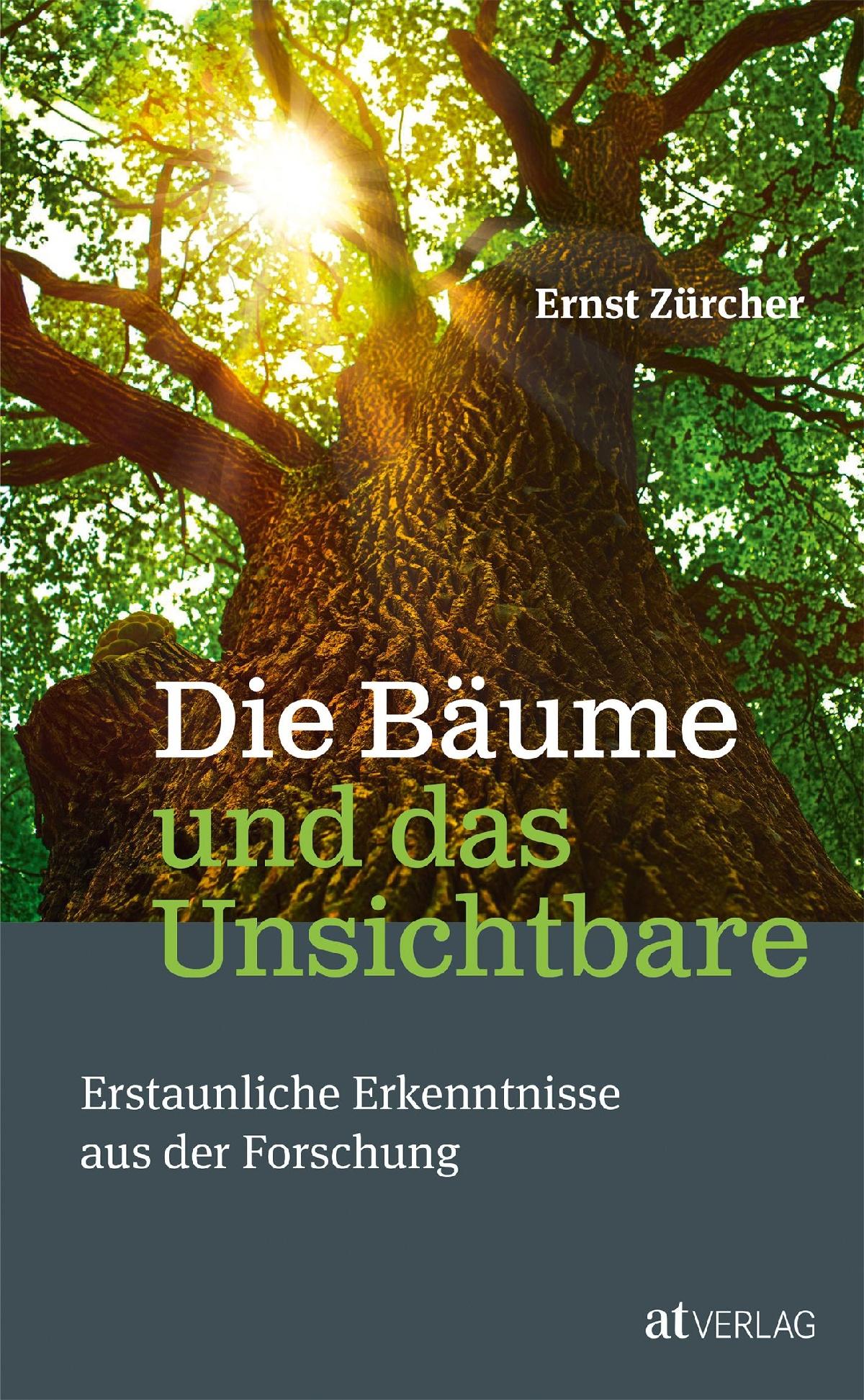 Die Bäume und das Unsichtbare